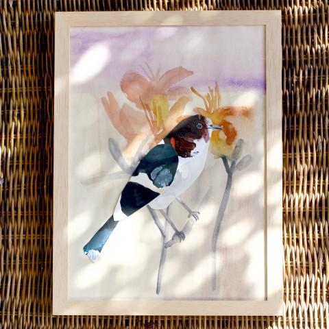 Taglilie & Vogel